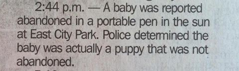 police baby puppy